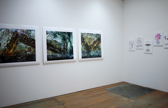 Mapping The Drowned World installation, Janet Tavener and Gosia Wlodarczak, October 2015.